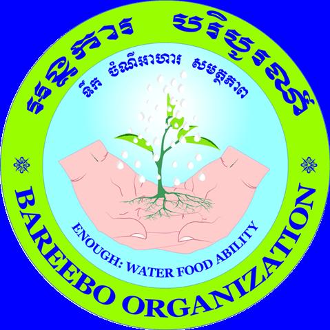 Bareebo Organization